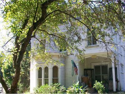 Amenia Single Family Home For Sale: 4879 Route 22