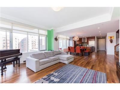 Bronx Condo/Townhouse For Sale: 3220 Arlington Avenue #3D