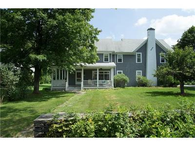Dover Plains Single Family Home For Sale: 28 Reimer Avenue