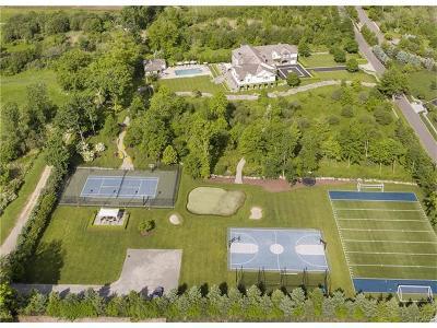 Westchester County Single Family Home For Sale: 5 Sarosca Farm