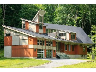 Putnam Valley Single Family Home For Sale: 47 Horton Hollow Road