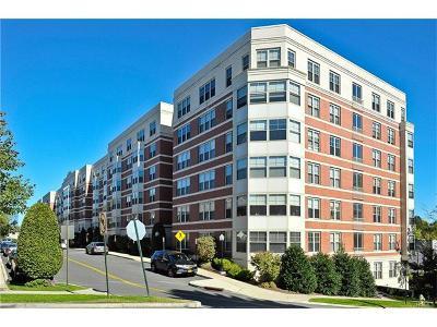 White Plains Condo/Townhouse For Sale: 300 Mamaroneck Avenue #633