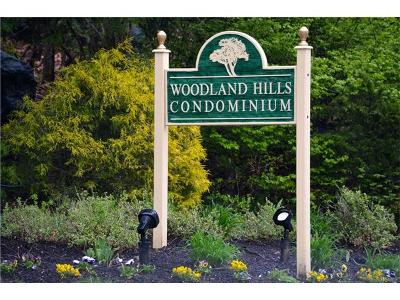 White Plains Condo/Townhouse For Sale: 207 Woodland Hills Road #207