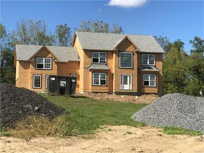 Goshen Single Family Home For Sale: 2 Abbe Road