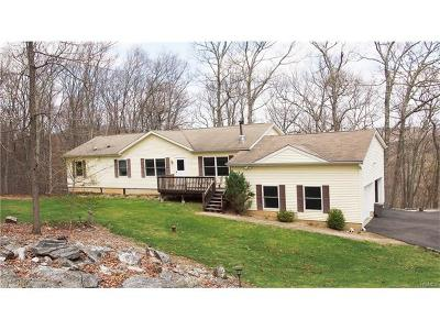 Brewster Single Family Home For Sale: 232 Ice Pond Road