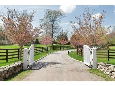Pound Ridge Single Family Home For Sale: 18 Schoolhouse Road