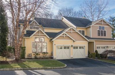Dobbs Ferry Single Family Home For Sale: 45 Landing Drive