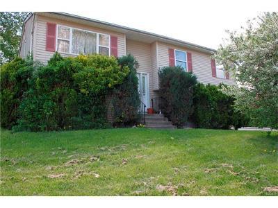 Single Family Home For Sale: 50 Conklin Avenue