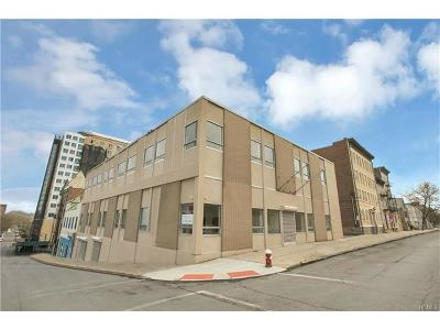 Mount Vernon Commercial For Sale: 145 North 5th Avenue