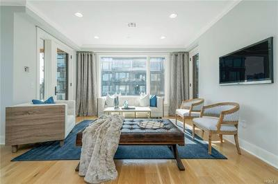 Tarrytown Condo/Townhouse For Sale: 45 Hudson View Way #200