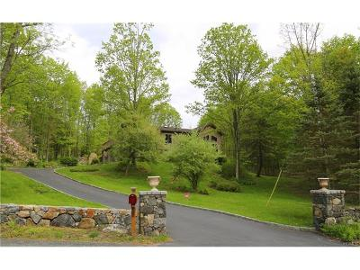 Brewster Single Family Home For Sale: 119 Foggintown Road