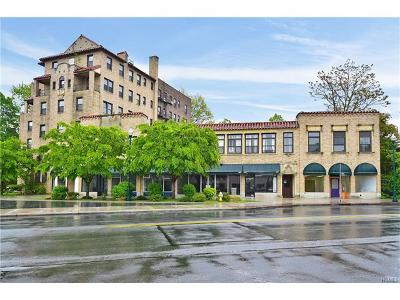 New Rochelle Commercial For Sale: 405 North Avenue #419