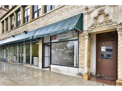New Rochelle Commercial For Sale: 405 North Avenue #Suit 4
