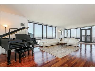 White Plains Condo/Townhouse For Sale: 10 City Place #PH3D