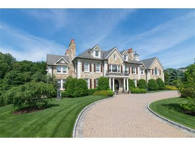 Westchester County Single Family Home For Sale: 7 Brook View