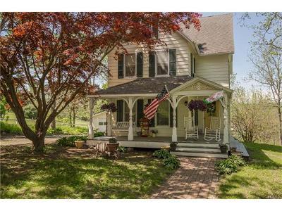 Amenia Single Family Home For Sale: 28 Depot Hill Road