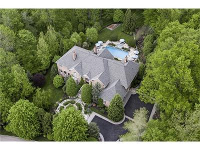 Armonk Single Family Home For Sale: 20 Wrights Mill Road