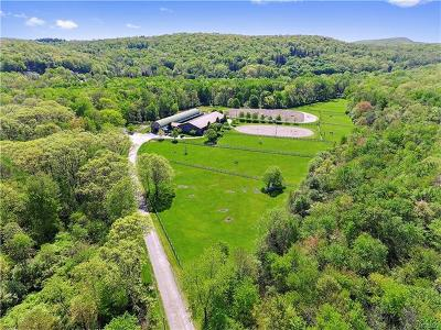 Brewster Single Family Home For Sale: 220 Doansburg Road