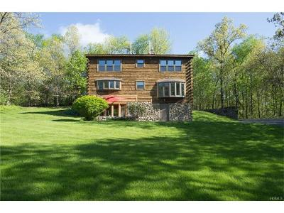 Lagrangeville Single Family Home For Sale: 115 Skidmore Road