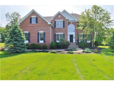 Hopewell Junction Single Family Home For Sale: 5 Gerts Way