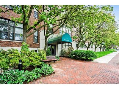 White Plains Condo/Townhouse For Sale: 75 McKinley Avenue #B3-8