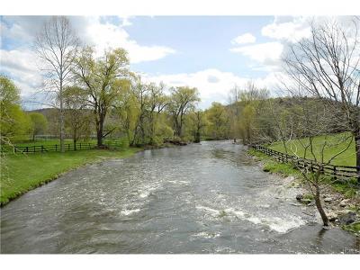 Pine Plains Residential Lots & Land For Sale: 460 Silvernails Road