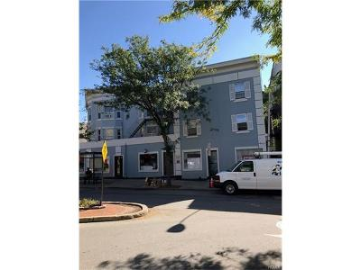 Sleepy Hollow Commercial For Sale: 196 Cortlandt Street