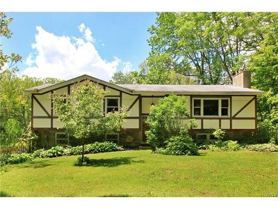 Dover Plains Single Family Home For Sale: 110 Ridge Road