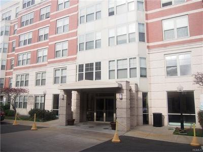 White Plains Condo/Townhouse For Sale: 300 Mamaroneck Avenue #315