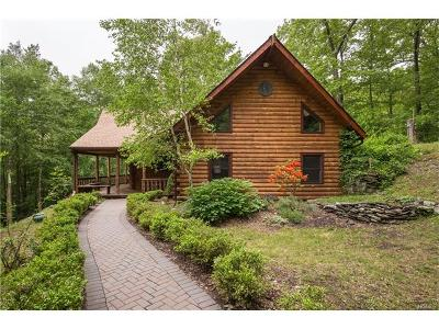 Millbrook Single Family Home For Sale: 682 North Clove Road