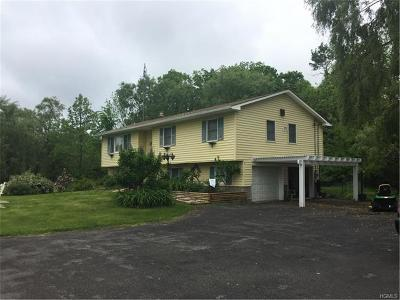 Plattekill Single Family Home For Sale: 81 Old Unionville Road