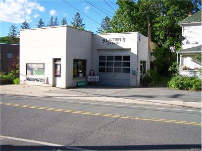 Sullivan County Commercial For Sale: 19 Broadway