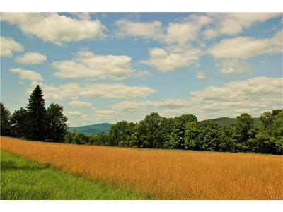 Orange County, Sullivan County, Ulster County Residential Lots & Land For Sale: 2316 Ulster Heights Road