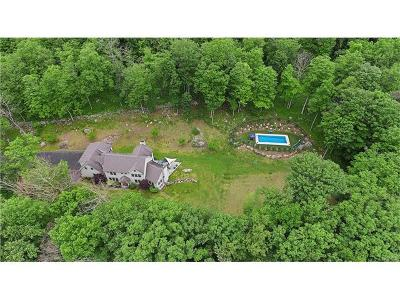 Putnam Valley Single Family Home For Sale: 24 Canopus Hill Road