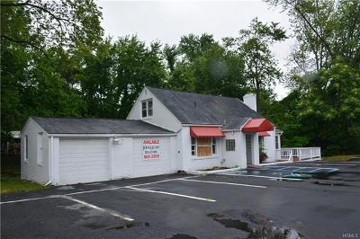 Newburgh Commercial For Sale: 30 North Plank Road