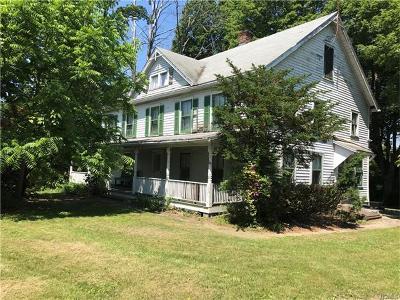 Pine Island Single Family Home For Sale: 87 Pulaski Highway