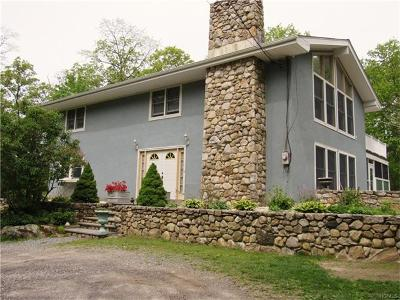 Stormville Single Family Home For Sale: 3775 Route 52