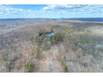 Dutchess County Residential Lots & Land For Sale: 105 Bundy Hill Road