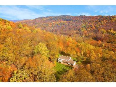 Putnam Valley Single Family Home For Sale: 23 Sunrise Drive