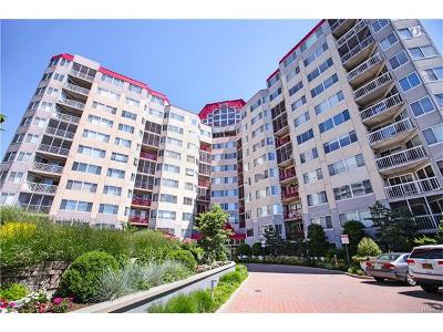 White Plains Condo/Townhouse For Sale: 10 Stewart Place #6DE