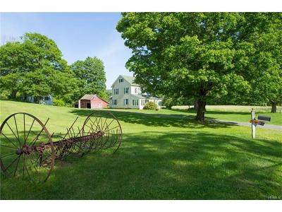 Dover Plains Single Family Home For Sale: 1100 Old State Route 22