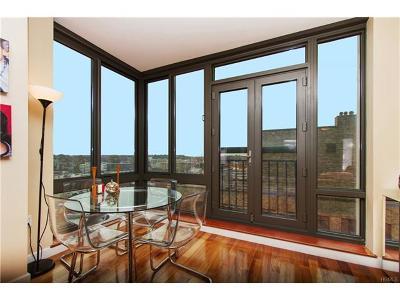 White Plains Condo/Townhouse For Sale: 10 City Place #15B