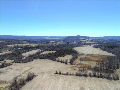 Dutchess County Residential Lots & Land For Sale: 5246 Route 22