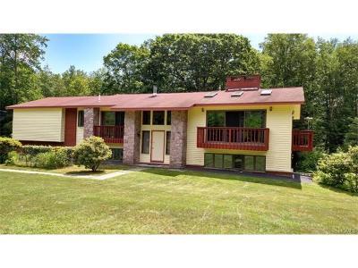 Glen Spey Single Family Home For Sale: 196 Rio Dam Road