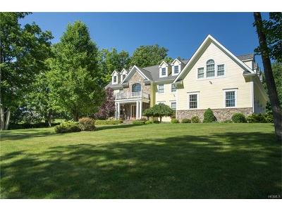 Lagrangeville Single Family Home For Sale: 91 Oakbrook Lane