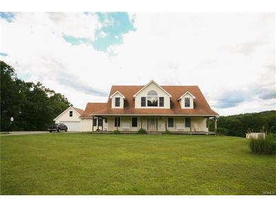 Dover Plains Single Family Home For Sale: 103 Christian Hill Road