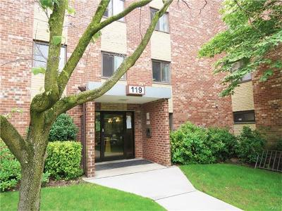 Yonkers Condo/Townhouse For Sale: 119 Dehaven Drive #134C