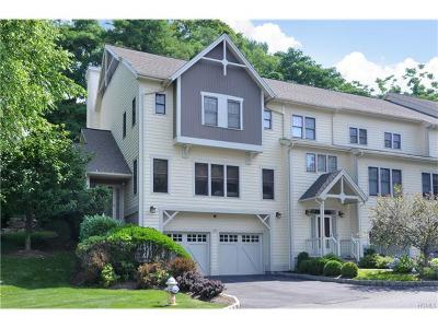 Dobbs Ferry Single Family Home For Sale: 42 Landing Drive