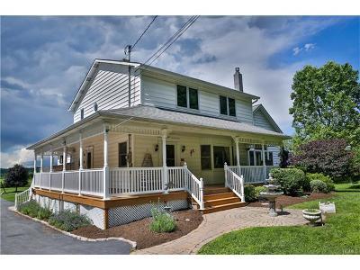 Goshen Single Family Home For Sale: 357 Mt Eve Road
