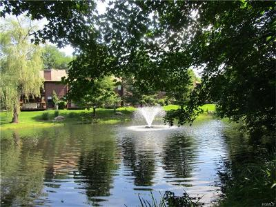 Ossining Condo/Townhouse For Sale: 61 Pond View Court
